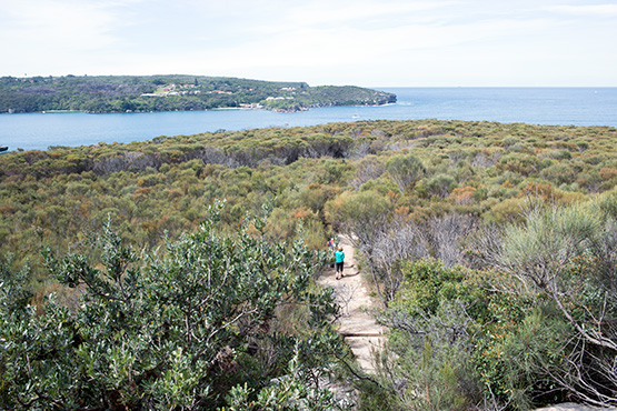 Dobroyd Heads Lookout Track, Sydney