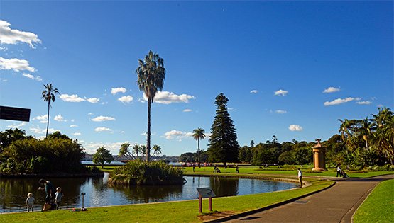 A large pond with islands at the Sydney Royal Botanic Gardens