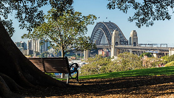 Sydney Harbour Bridge from Observatory Hill