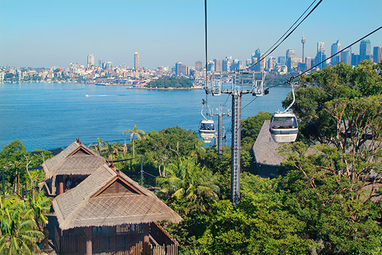 Sky Safari cable car ride at Taronga Zoo, Sydney