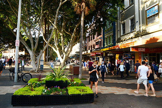 Large trees are a feature of the ferry wharf end of  The Corso, Manly, Sydney